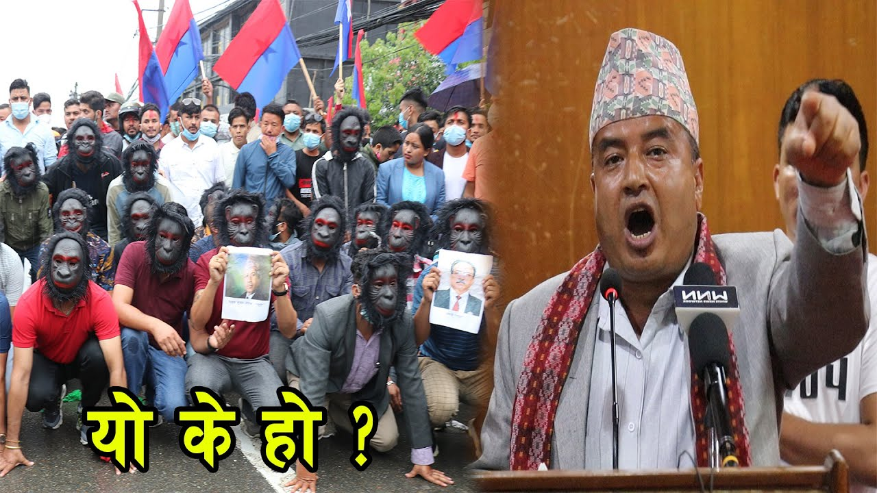 Demonstration of youth association in the guise of monkey in Kathmandu