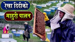 After success in Gundruk and pickles, towards bees